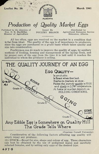 Production of quality market eggs /