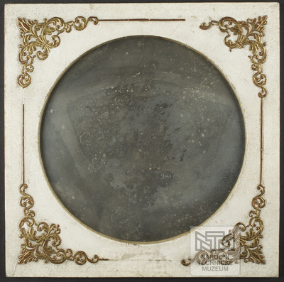 Daguerreotype of a section of a plant stem produced using a microscope