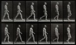A man walking. Photogravure after Eadweard Muybridge, 1887.
