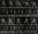 A man throwing a ball. Photogravure after Eadweard Muybridge