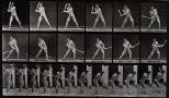 A man hitting a ball with a bat. Photogravure after Eadweard