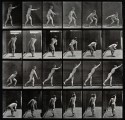 A male discus thrower. Photogravure after Eadweard Muybridge