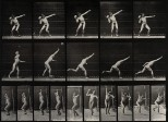 A man putting the shot. Photogravure after Eadweard Muybridg