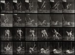 Two men wrestling. Photogravure after Eadweard Muybridge, 18