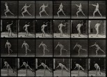 A javelin thrower. Photogravure after Eadweard Muybridge, 18