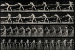 A carpenter planing. Photogravure after Eadweard Muybridge,