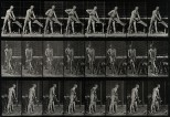 A carpenter sawing. Photogravure after Eadweard Muybridge, 1