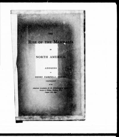 The rise of the mammalia in North America address by Henry Fairfield Osborn.