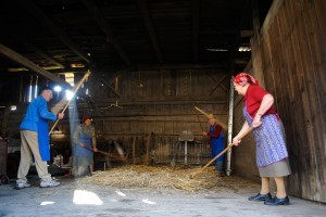 Threshing with hand flails – two pairs
